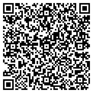 QR-код с контактной информацией организации Козырный Туз, ЧП