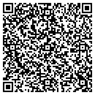 QR-код с контактной информацией организации Бинго, ЧП
