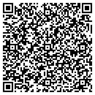 QR-код с контактной информацией организации H2O, ИП