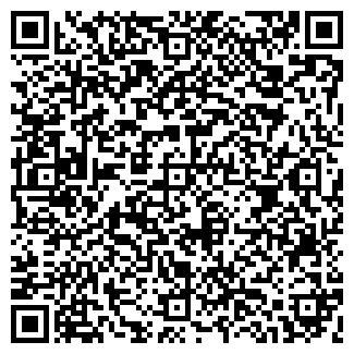 QR-код с контактной информацией организации Домино,ЧП