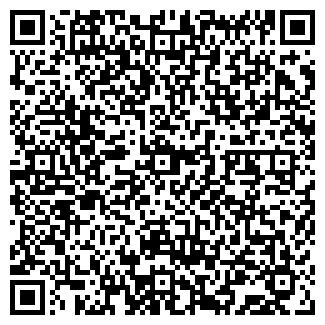 QR-код с контактной информацией организации Пластилин, ИП
