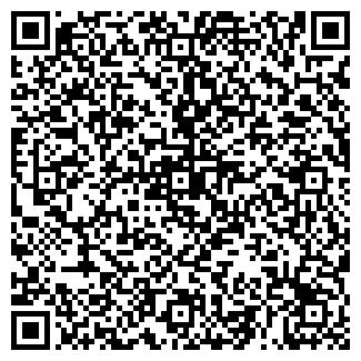 QR-код с контактной информацией организации Ступеньки, ИП