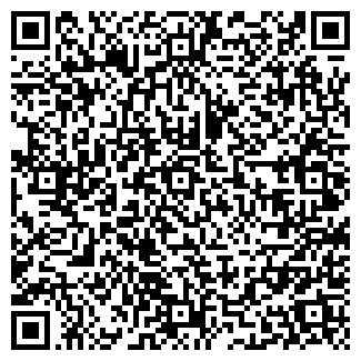 QR-код с контактной информацией организации Бильярдис, ЧП