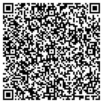 QR-код с контактной информацией организации Argo (Арго), ИП