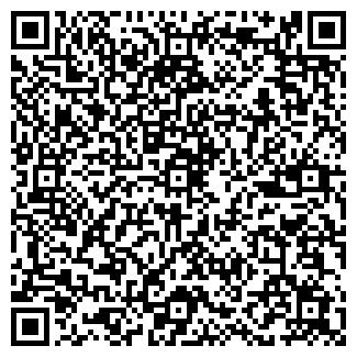 QR-код с контактной информацией организации Домино, Шоу театр