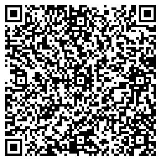 QR-код с контактной информацией организации Kidmag, ЧП