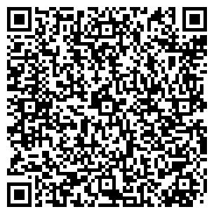 QR-код с контактной информацией организации Мир позолоты, ЧП