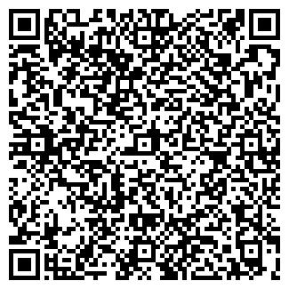 QR-код с контактной информацией организации Холод, ЧП