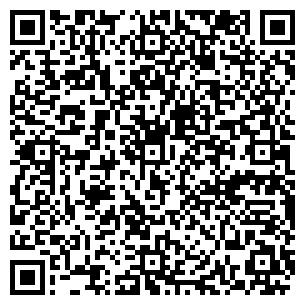 QR-код с контактной информацией организации Дювис, ЧП