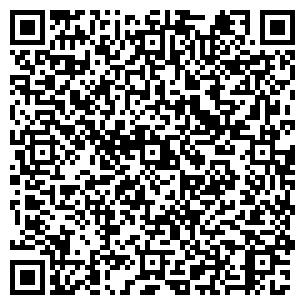 QR-код с контактной информацией организации Центр Элит, ТОО