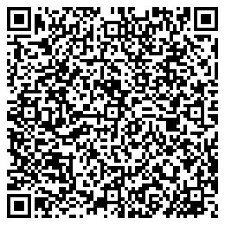 QR-код с контактной информацией организации Равиль, ЧП