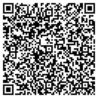 QR-код с контактной информацией организации Родник, ИП