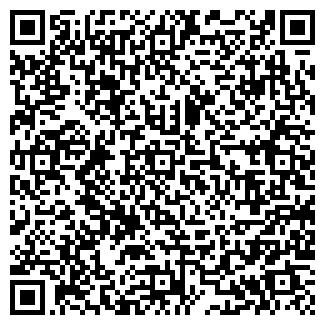QR-код с контактной информацией организации Айтишник, СПД