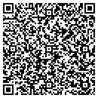 QR-код с контактной информацией организации AvaNX, ЧП