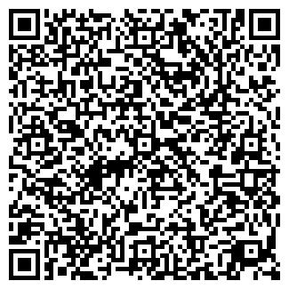 QR-код с контактной информацией организации IT STANDART, ИП