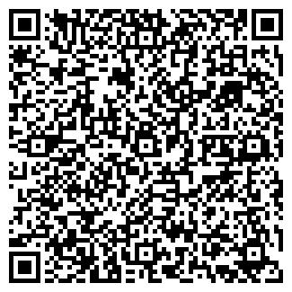 QR-код с контактной информацией организации Аллигатор, ИП