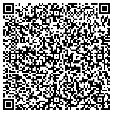QR-код с контактной информацией организации Vladyko-Tour (Владыко-Тур ), ТОО