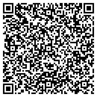 QR-код с контактной информацией организации Дом сайтов, ИП