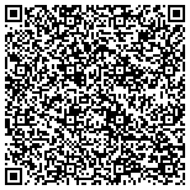 QR-код с контактной информацией организации Aliari it service (Алиари ит сервис), ИП