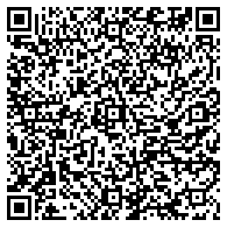 QR-код с контактной информацией организации Вокруг света, ТОО
