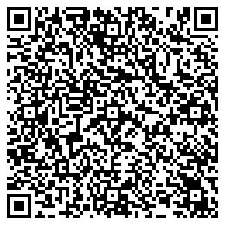 QR-код с контактной информацией организации PANDORRA, ИП