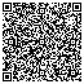 QR-код с контактной информацией организации Мызин, ИП