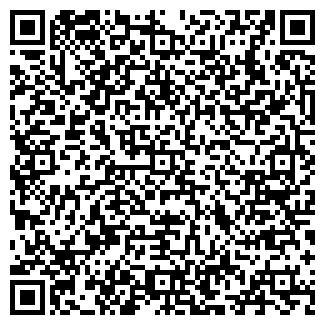QR-код с контактной информацией организации Programmer,ТОО
