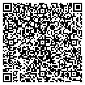 QR-код с контактной информацией организации Copyservice (Кописервис), ТОО