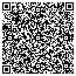 QR-код с контактной информацией организации Визит Плюс, ЧП