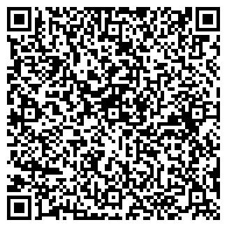 QR-код с контактной информацией организации Топиар (Topiar), Компания