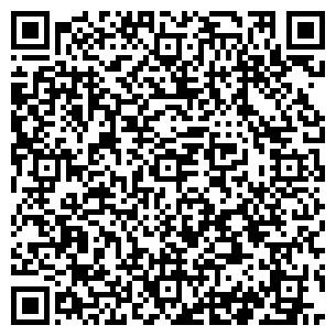 QR-код с контактной информацией организации Пульсар, СПД