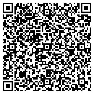 QR-код с контактной информацией организации Бахур, ЧП
