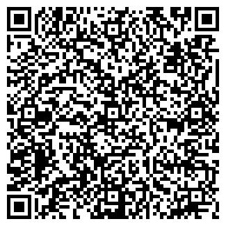 QR-код с контактной информацией организации DKZ, ИП