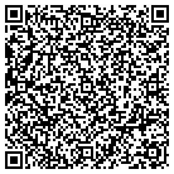 QR-код с контактной информацией организации Vista LS, Компания