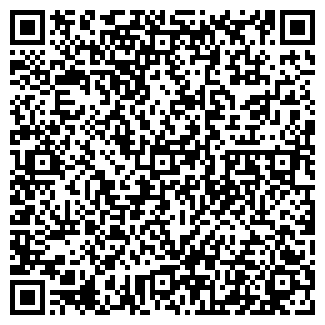 QR-код с контактной информацией организации Алтын дан, ИП