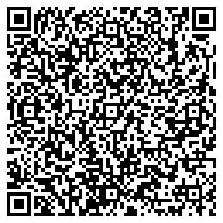 QR-код с контактной информацией организации Вилена, ТОО