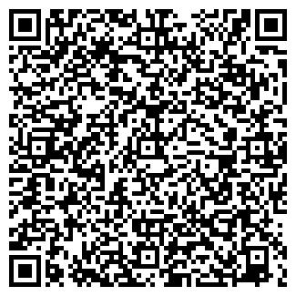 QR-код с контактной информацией организации Аметис, ЧП