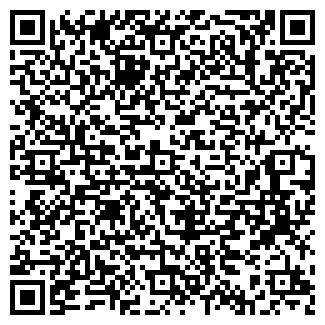 QR-код с контактной информацией организации Холодайс, ЧП