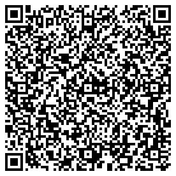 QR-код с контактной информацией организации Шина Плюс, ЧП