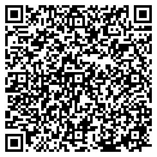 QR-код с контактной информацией организации Terius (Териус), ТОО