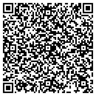 QR-код с контактной информацией организации Тинали, ИП