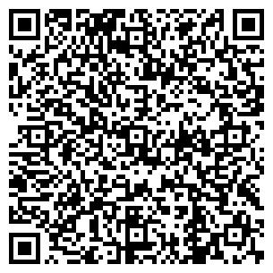 QR-код с контактной информацией организации Vasis (Васис), ООО