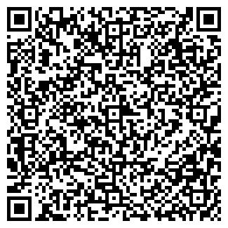 QR-код с контактной информацией организации Викойл, ООО