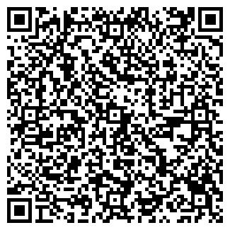 QR-код с контактной информацией организации Пислица, ЧП
