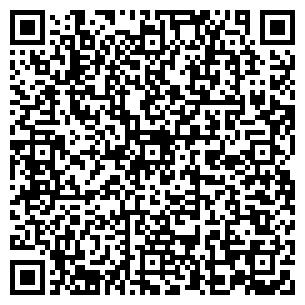 QR-код с контактной информацией организации Радиус, ИП