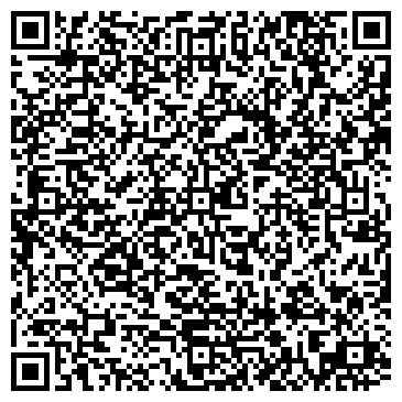 QR-код с контактной информацией организации Alais Surveys (Алайс Сервис), ТОО