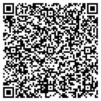 QR-код с контактной информацией организации Нур-2010, ИП