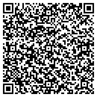 QR-код с контактной информацией организации Транс Линк, ООО