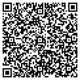 QR-код с контактной информацией организации ДМТ-Центр, ООО