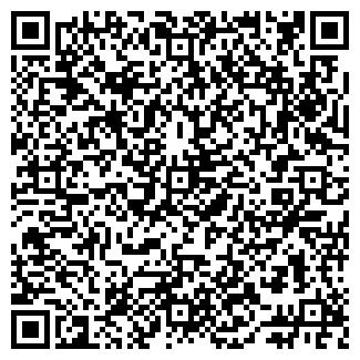 QR-код с контактной информацией организации Топ-Авто, ООО